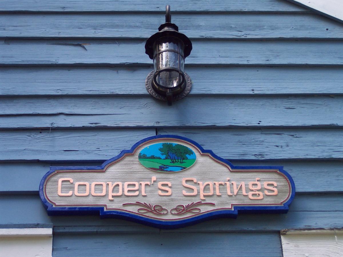 Coopers Springs151.JPG